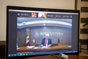 Kənd təsərrüfatı naziri İnam Kərimov FAO-nun 42-ci sessiyasında çıxış edib